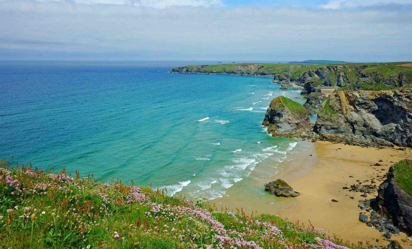French translation internship in Cornwall